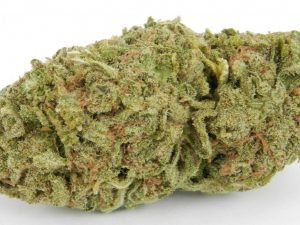 Buy Double Dream Marijuana Strain