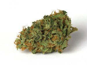 Buy Jesus OG Marijuana Strain