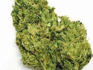 Buy OG Chem Marijuana Strain