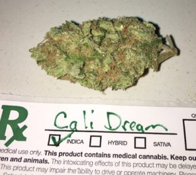 Cali Dream Cannabis Strain