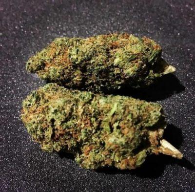 Chemdawg Cannabis Strain