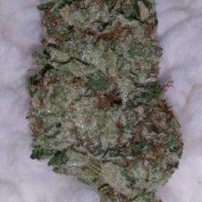 Gorilla Glue #4 Marijuana Strain