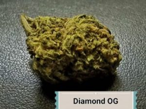 buy diamond og marijuana strain