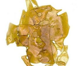 buy sweet skunk shatter