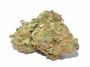 Afghan Kush Marijuana Strain